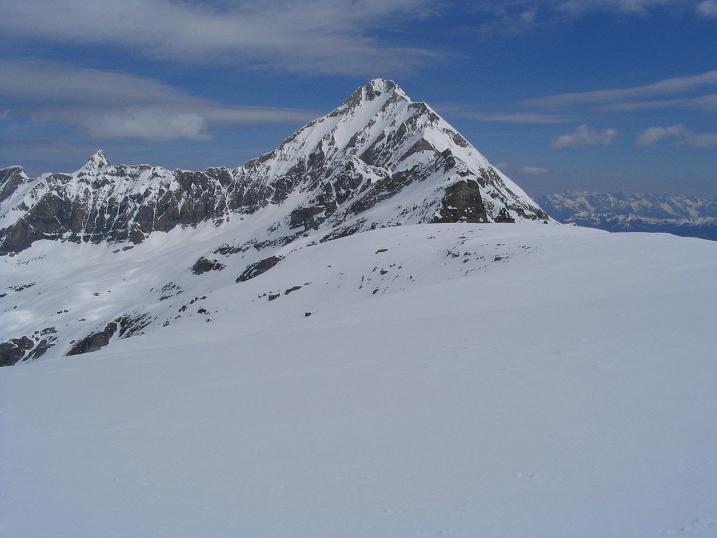 Foto: Andreas Koller / Ski Tour / Vom Enzingerboden auf den Hocheiser, 3206m / 29.01.2009 19:57:05