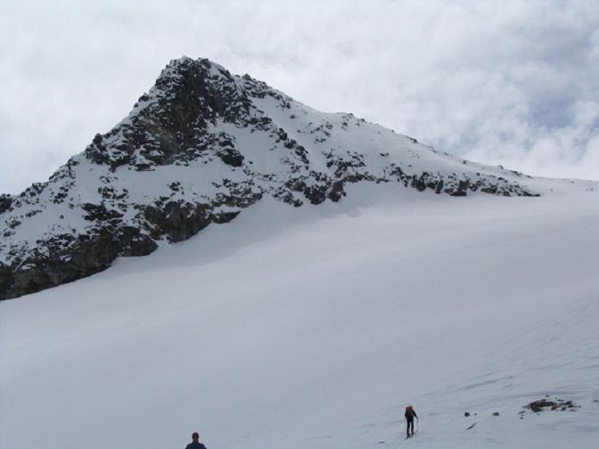 Foto: Andreas Koller / Ski Tour / Vom Enzingerboden auf den Hocheiser, 3206m / 29.01.2009 19:53:51