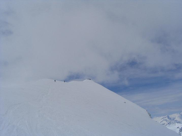 Foto: Andreas Koller / Ski Tour / Vom Enzingerboden auf den Hocheiser, 3206m / 29.01.2009 19:53:23