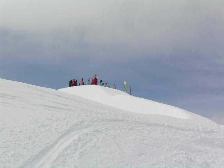 Foto: Andreas Koller / Ski Tour / Vom Enzingerboden auf den Hocheiser, 3206m / 29.01.2009 19:53:08