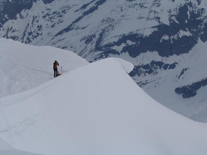 Foto: Andreas Koller / Ski Tour / Vom Enzingerboden auf den Hocheiser, 3206m / 29.01.2009 19:53:01