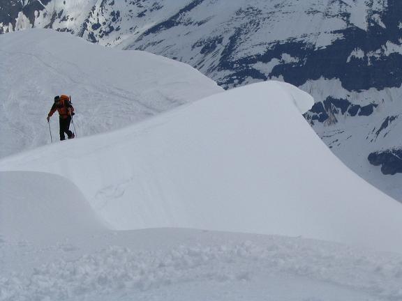 Foto: Andreas Koller / Ski Tour / Vom Enzingerboden auf den Hocheiser, 3206m / 29.01.2009 19:52:52