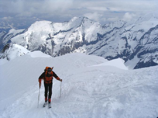 Foto: Andreas Koller / Ski Tour / Vom Enzingerboden auf den Hocheiser, 3206m / 29.01.2009 19:52:46