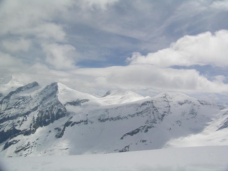 Foto: Andreas Koller / Ski Tour / Vom Enzingerboden auf den Hocheiser, 3206m / 29.01.2009 19:52:31