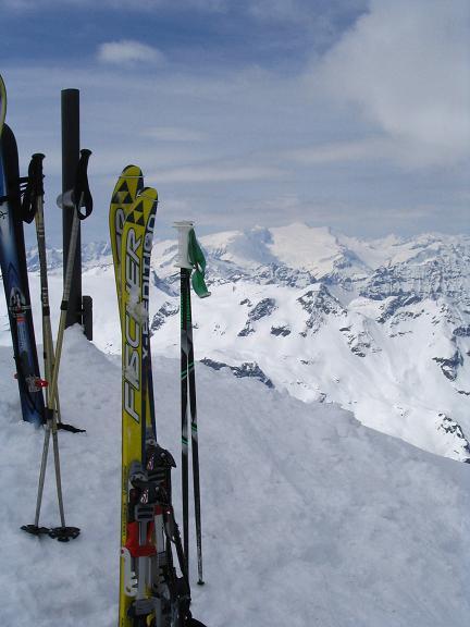 Foto: Andreas Koller / Ski Tour / Vom Enzingerboden auf den Hocheiser, 3206m / 29.01.2009 19:52:24
