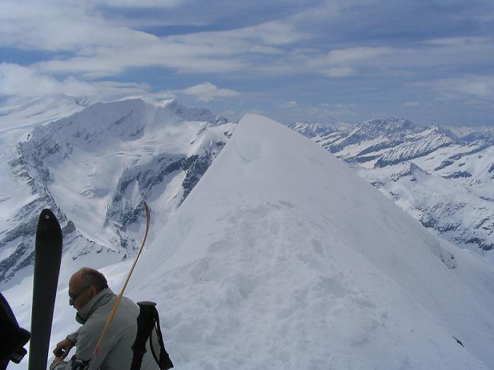 Foto: Andreas Koller / Ski Tour / Vom Enzingerboden auf den Hocheiser, 3206m / 29.01.2009 19:52:18