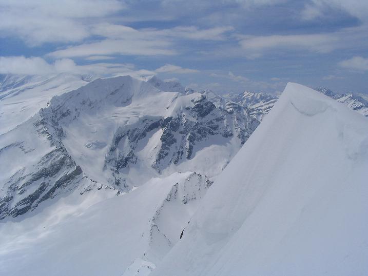 Foto: Andreas Koller / Ski Tour / Vom Enzingerboden auf den Hocheiser, 3206m / 29.01.2009 19:52:12