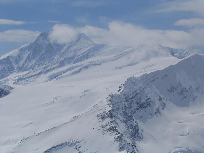 Foto: Andreas Koller / Ski Tour / Vom Enzingerboden auf den Hocheiser, 3206m / 29.01.2009 19:51:41