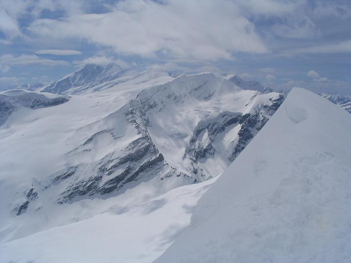 Foto: Andreas Koller / Ski Tour / Vom Enzingerboden auf den Hocheiser, 3206m / 29.01.2009 19:51:27