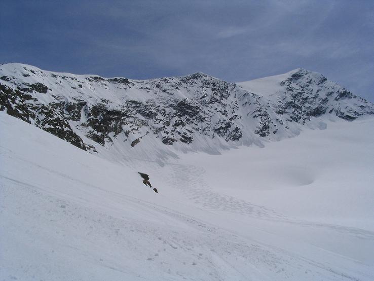 Foto: Andreas Koller / Ski Tour / Vom Enzingerboden auf den Hocheiser, 3206m / 29.01.2009 19:51:04
