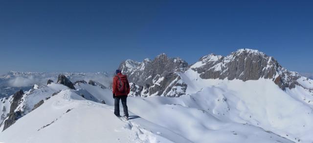 Foto: Wolfgang Lauschensky / Ski Tour / Scheichenspitze - Gruberkar / Gipfelblick zu Dachsteinsüdwand und Koppenkarstein / 22.03.2012 16:44:28
