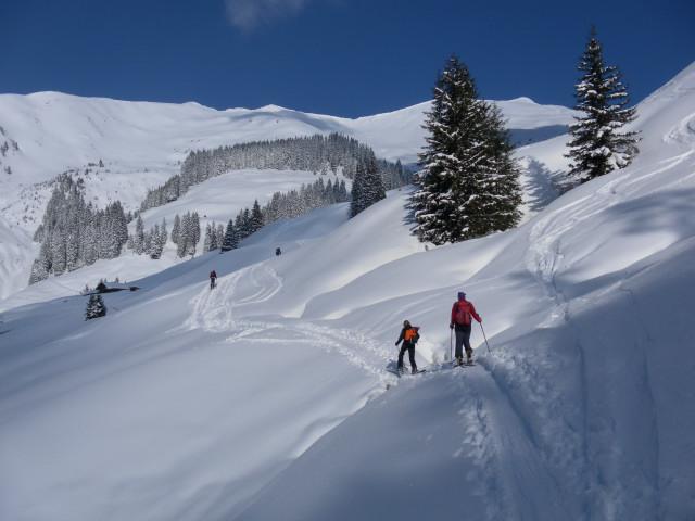Foto: Wolfgang Lauschensky / Ski Tour / Zirmkogel (2215m) / Katzensteinalm, zwischen den Bäumen der Zirmkogel / 12.02.2013 17:01:05