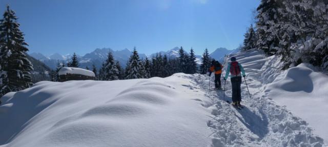 Foto: Wolfgang Lauschensky / Ski Tour / Zirmkogel (2215m) / zurück bei der Forststraße mit Blick in die Glockner Gruppe Nord / 12.02.2013 16:59:26