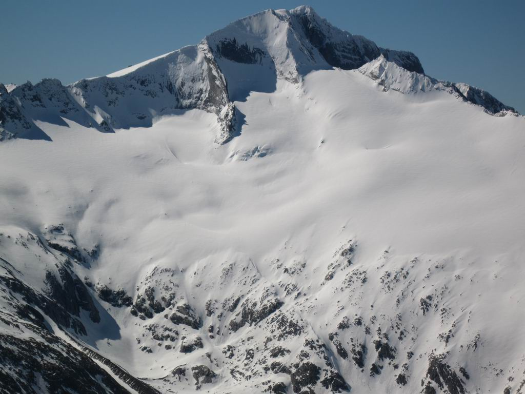 Foto: Heidi Schützinger / Ski Tour / Mittleres Schwarzhorn (2931m) / Hochalmspitze die Tauernkönigin / 12.06.2010 17:03:34