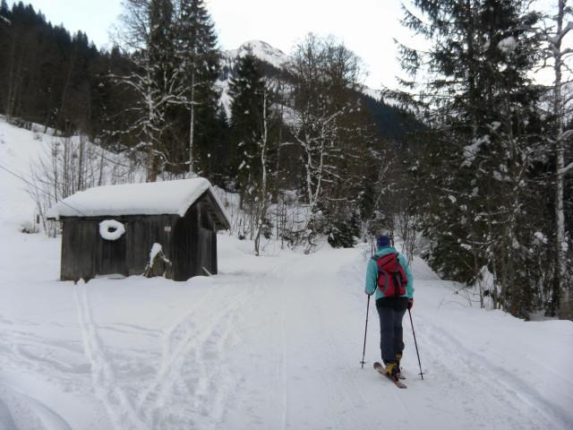 Foto: Wolfgang Lauschensky / Ski Tour / Von Aurach auf den Staffkogel (2115m) / am langen Forstweg im Aurachgraben / 02.01.2013 18:13:43