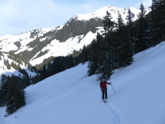 Foto: Wolfgang Lauschensky / Ski Tour / Von Aurach auf den Staffkogel (2115m) / erste freie Almwiesen, dahinter Gebra / 02.01.2013 18:13:30