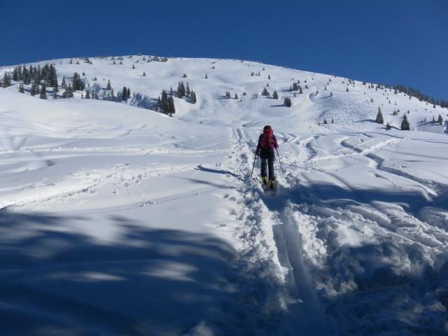 Foto: Wolfgang Lauschensky / Ski Tour / Lodron (1926m) / Lodronalmen und Gipfelkuppe / 26.02.2012 15:15:28