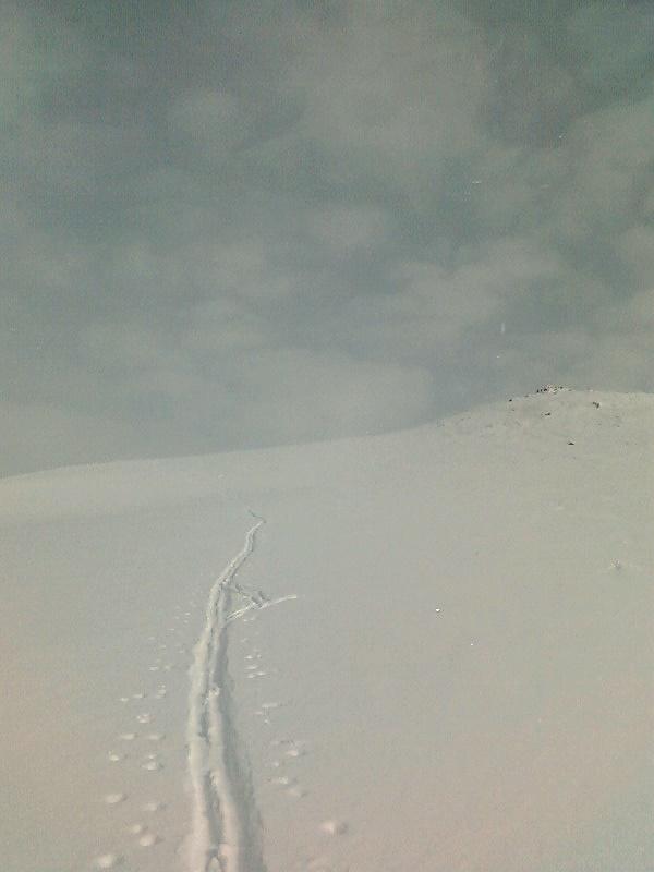 Foto: mothe99 / Ski Tour / Mirnock (2110m) / 01.02.2009 19:25:37