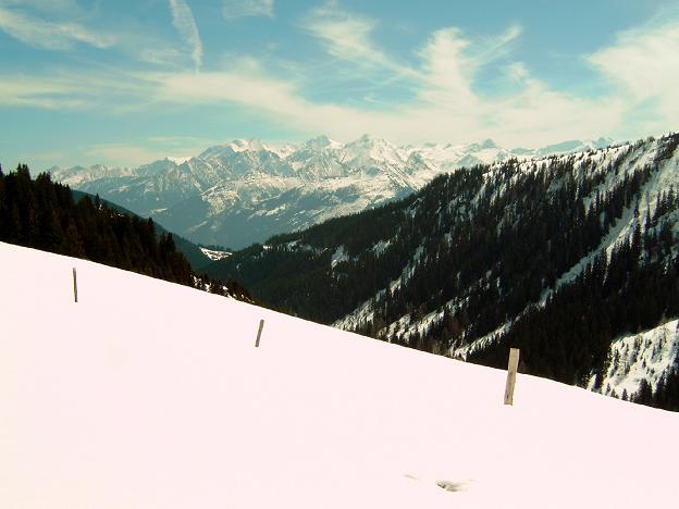 Foto: Andreas Koller / Ski Tour / Geißstein (2363m) / 27.01.2009 21:58:21