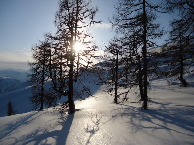 Foto: Günter Siegl / Skitour / Ausseer Zinken (1854m) / 19.02.2012 14:27:52