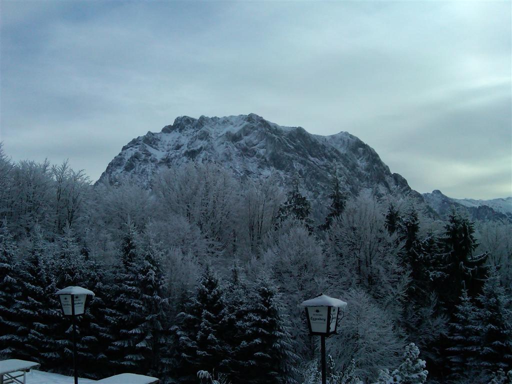 Foto: Walter Kopecny / Skitour / Grünberg (984m) / Majestätisch ist der Anblick des Traunsteins / 11.01.2011 15:22:21