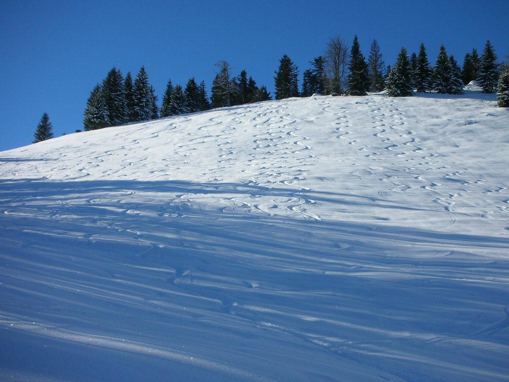 Foto: berg_karl / Ski Tour / Linsberg (1238m) / 07.01.2011 19:53:25