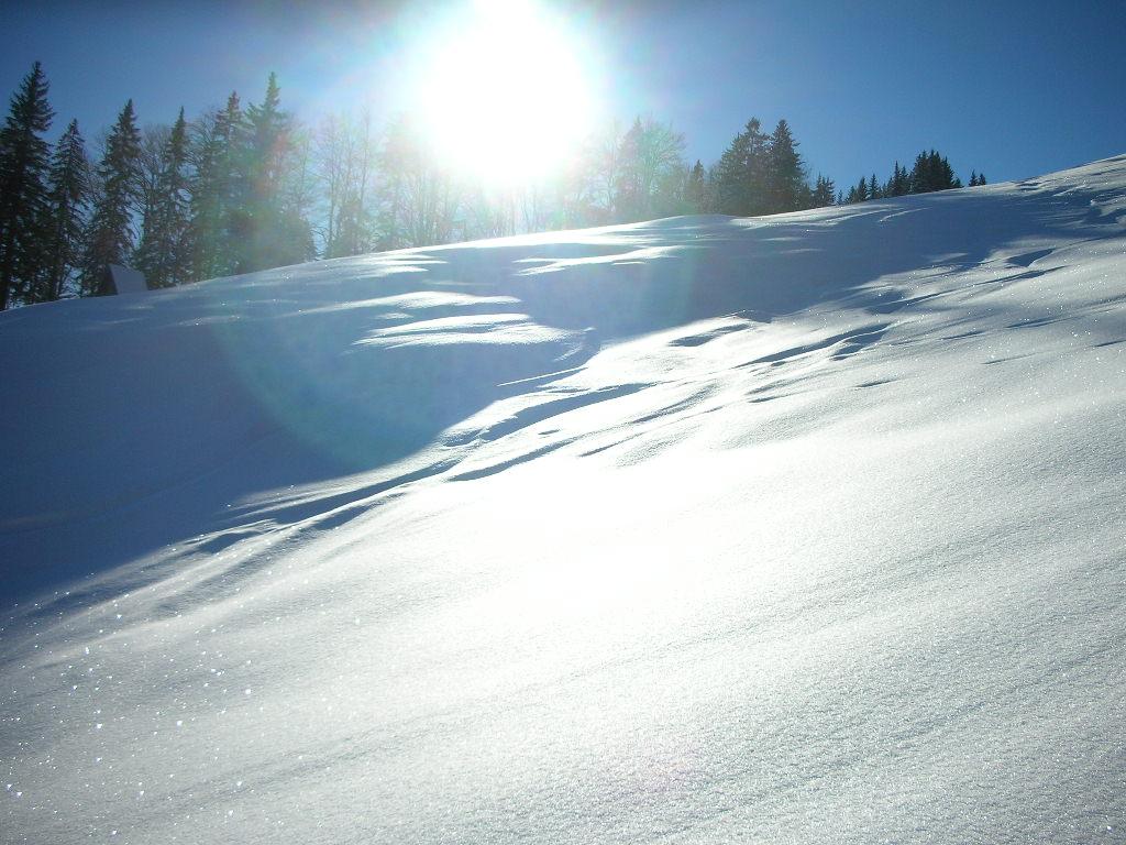 Foto: berg_karl / Ski Tour / Linsberg (1238m) / 07.01.2011 19:53:52