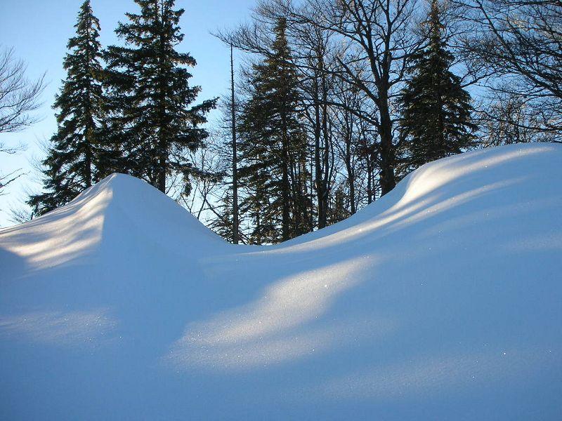Foto: berg_karl / Ski Tour / Linsberg (1238m) / 07.01.2011 19:56:24