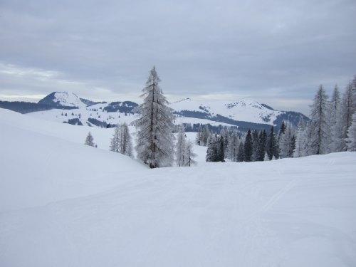 Foto: hofchri / Ski Tour / Braunedlkogel (1894 m) / 04.01.2009 18:38:27