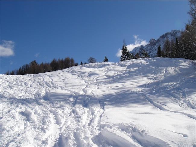 Foto: ksc / Ski Tour / Auerlingköpfl / 19.02.2011 18:45:47