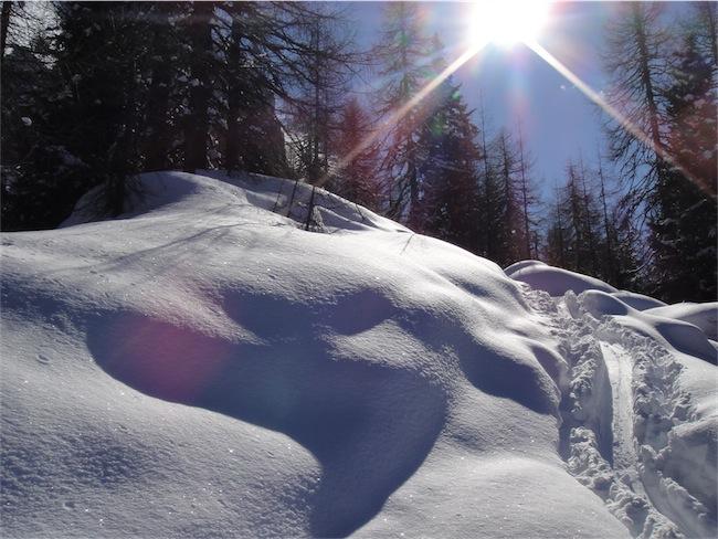 Foto: ksc / Ski Tour / Auerlingköpfl / 19.02.2011 18:46:39