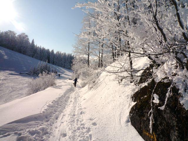 Foto: Thomas Höllwarth / Ski Tour / Über den Muckenkogel auf die Hinteralm (1311m) / 28.02.2009 22:17:26