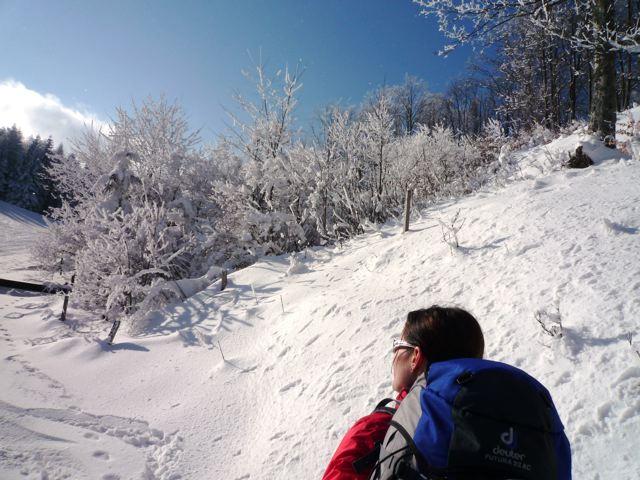 Foto: Thomas Höllwarth / Ski Tour / Über den Muckenkogel auf die Hinteralm (1311m) / 28.02.2009 22:17:37