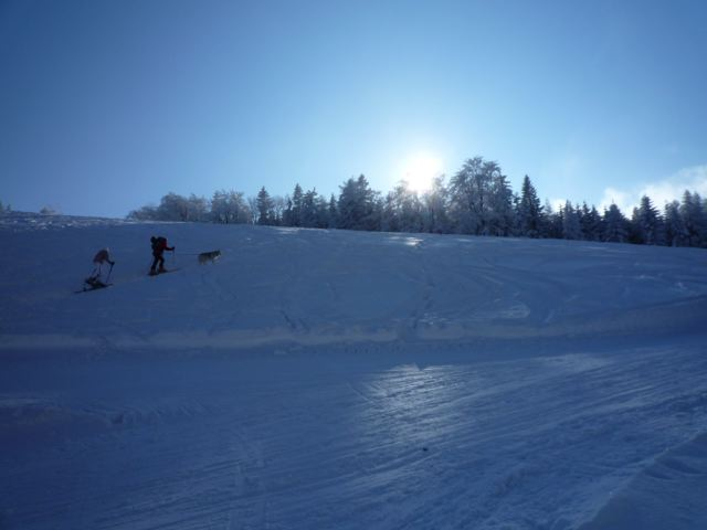 Foto: Thomas Höllwarth / Ski Tour / Über den Muckenkogel auf die Hinteralm (1311m) / 28.02.2009 22:17:46