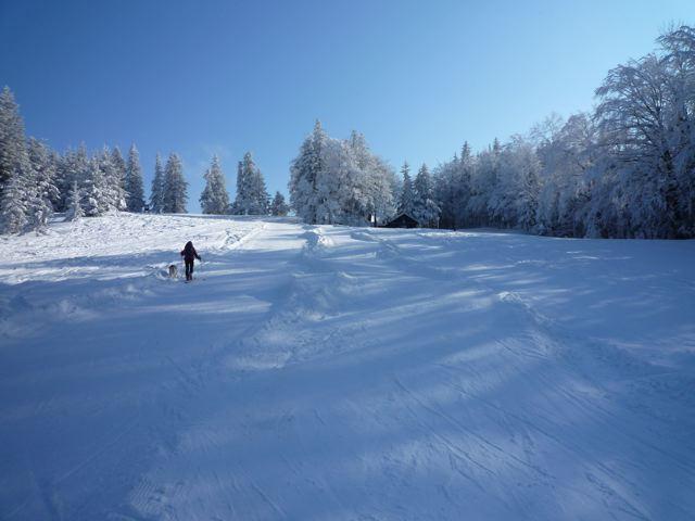 Foto: Thomas Höllwarth / Ski Tour / Über den Muckenkogel auf die Hinteralm (1311m) / 28.02.2009 22:17:58