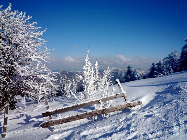 Foto: Thomas Höllwarth / Ski Tour / Über den Muckenkogel auf die Hinteralm (1311m) / 28.02.2009 22:18:35