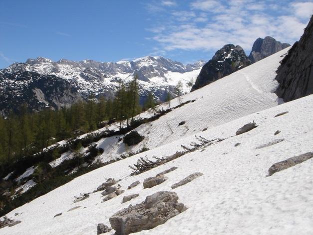 Foto: Manfred Karl / Ski Tour / Manndlscharte (2098m) / Am Steiglweg / 27.01.2009 20:44:14
