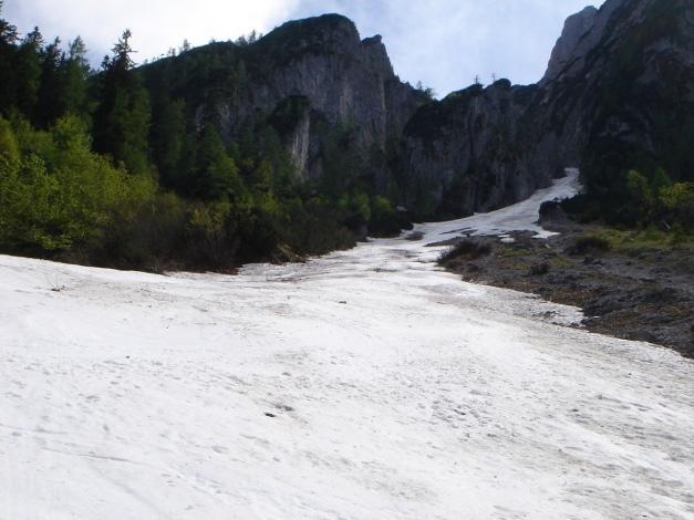 Foto: Manfred Karl / Ski Tour / Manndlscharte (2098m) / Die Steilrinne zwischen Scharlingkogel und Strichkögel bietet eine abschließende tolle Abfahrt und man vermeidet damit die Waldpassagen am Steiglweg. / 27.01.2009 20:35:33
