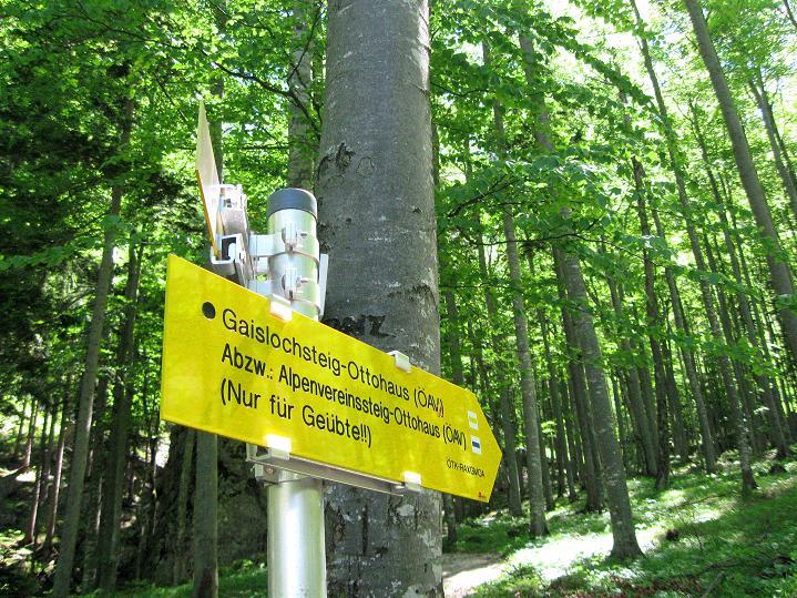 Foto: Andreas Koller / Klettersteig Tour / Gaislochsteig (1922m) / 04.06.2011 22:34:00