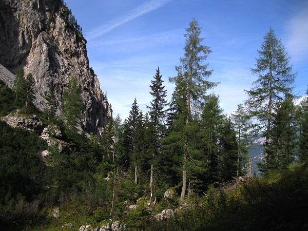 Foto: Andreas Koller / Klettersteig Tour / Gaislochsteig (1922m) / 05.04.2014 14:01:30