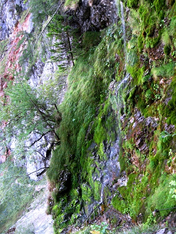 Foto: Andreas Koller / Klettersteig Tour / Gaislochsteig (1922m) / 05.04.2014 14:02:17
