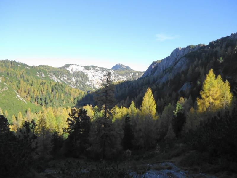 Foto: Günter Siegl / Wander Tour / Ahornsee - Grafenbergalm - Kufstein (2049m) / 31.10.2014 10:19:34