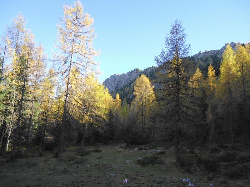 Foto: Günter Siegl / Wander Tour / Ahornsee - Grafenbergalm - Kufstein (2049m) / 31.10.2014 10:19:43