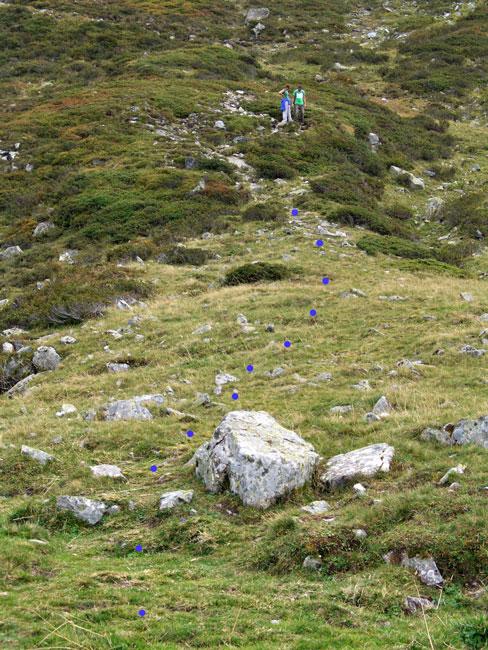 Foto: vince 51 / Wander Tour / Von der Bielerhöhe auf das Hohe Rad / Beginn des Steig's zum Hohen Rad / 24.11.2011 23:27:02