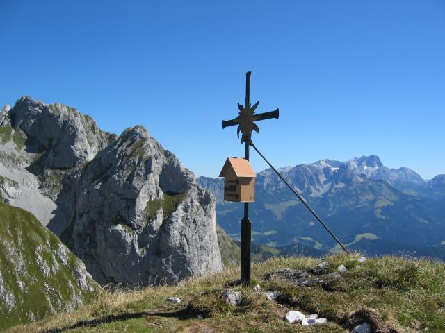 Foto: pepi4813 / Wander Tour / Über den Scharfen Steig und die Laufener Hütte auf Tagweide und Hochkarfelderkopf / Edelweißkogel / 19.07.2009 10:23:11