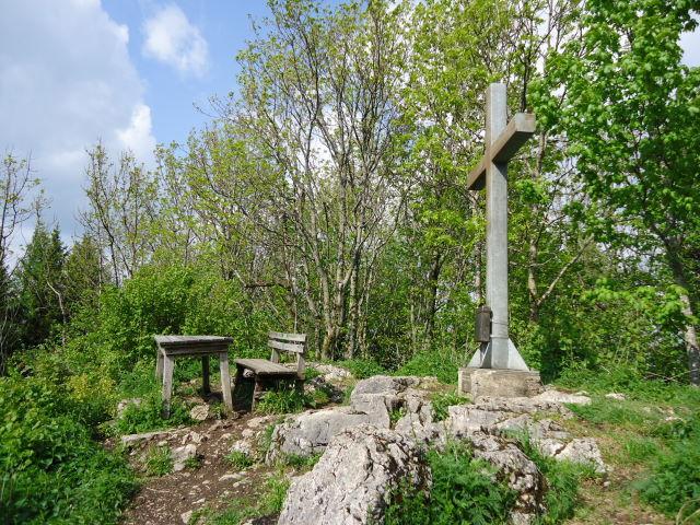 Foto: Günter Siegl / Wander Tour / Hirschwaldstein (1095m) / 18.05.2012 11:27:40