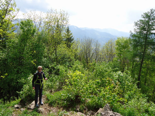 Foto: Günter Siegl / Wander Tour / Hirschwaldstein (1095m) / 18.05.2012 11:28:08