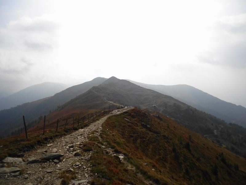Foto: Günter Siegl / Wander Tour / Rundweg über Tschiernock, Hochpalfennock und Tschierweger Nock / Hochpalfennock / 10.11.2016 21:09:51
