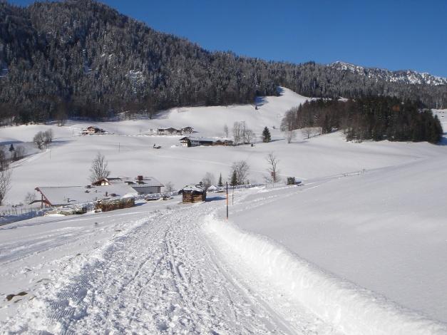 Foto: Manfred Karl / Rodeltour / Toter Mann (1391m) / Die letzten Meter zum Parkplatz / 18.12.2008 12:27:24