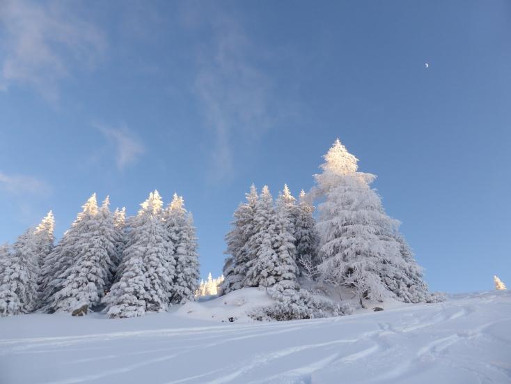 Foto: Manfred Karl / Ski Tour / Peitingköpfl (1720m) / 18.03.2015 20:19:22